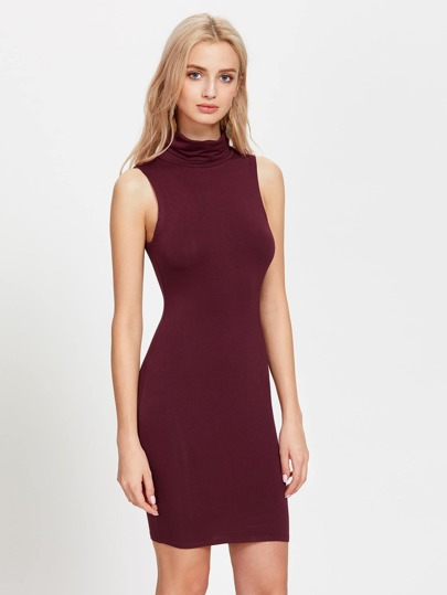 Turtleneck Form Fitting Dress