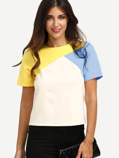 Color Block Cut And Sew Top