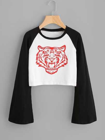 Tee-shirt manche raglan contrastée imprimé du tigre