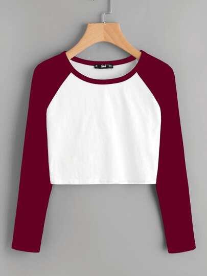 Contrast Raglan Sleeve Crop T-shirt