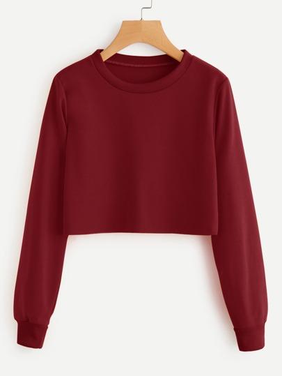 Basic Pullover Crop Sweatshirt