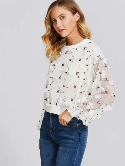 Botanical Embroidery And Applique Mesh Overlay Pullover