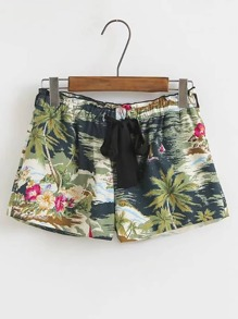 Drawstring Waist Tropical Print Shorts