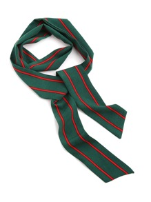 Vertical Striped Print Skinny Scarf