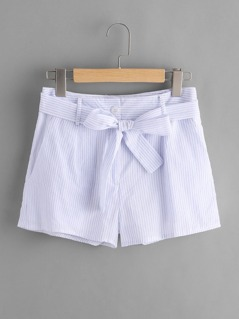 Tie Waist Vertical Striped Shorts