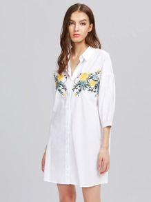 Flower Embroidered Lantern Sleeve Shirt Dress