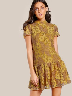 Drop Waist Fit & Flare Floral Lace Dress