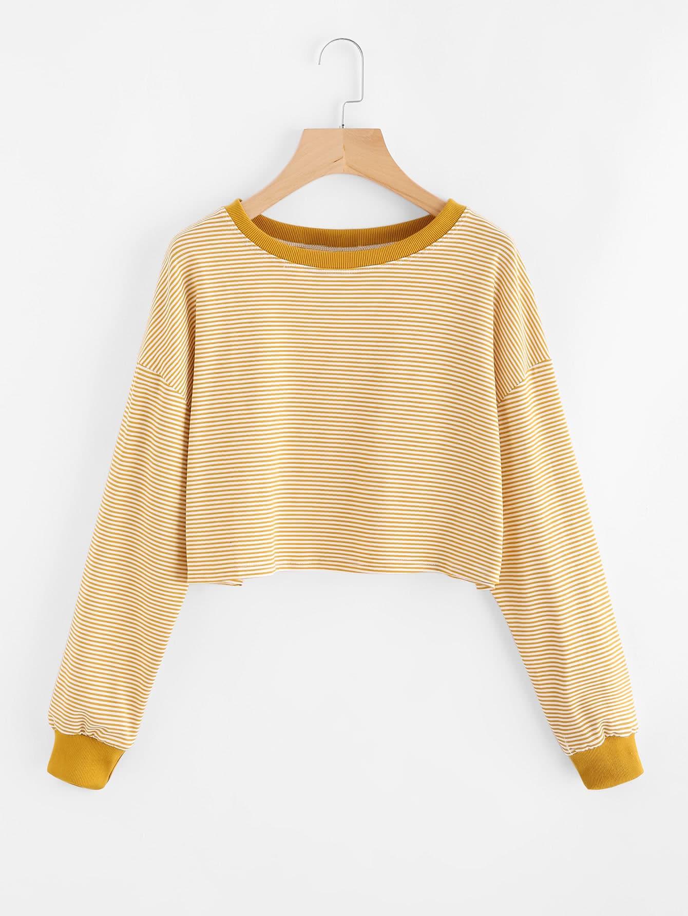 купить Contrast Trim Striped Sweatshirt недорого