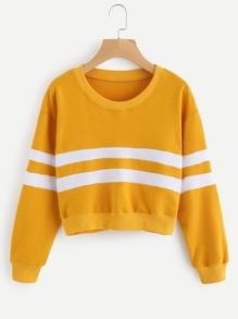 Stripe Panel Ribbed Trim Crop Sweatshirt