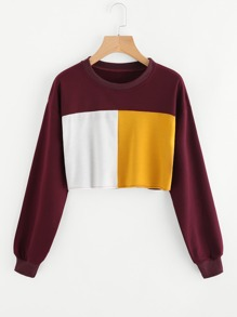 Sudadera corta en color block