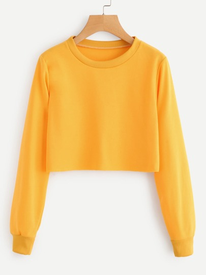 Round Neck Crop Sweatshirt