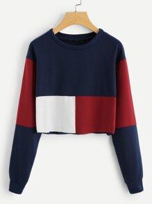 Cut And Sew Crop Sweatshirt