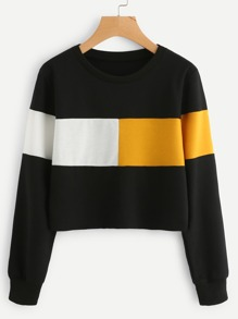 Contrast Panel Crop Sweatshirt