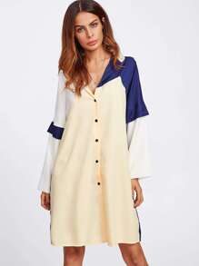 Color Block Frill Sleeve Shirt Dress