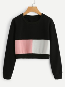 Cut And Sew Thicker Sweatshirt