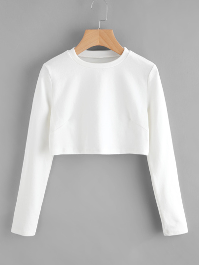 Crew Neck Crop Tshirt