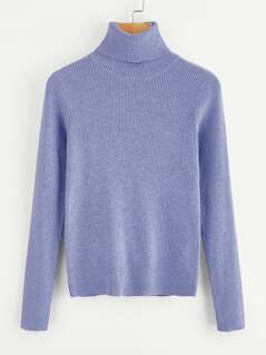 Roll Neck Rib Knit Solid Sweater
