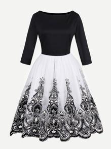 Mesh Lace Panel Flare Dress