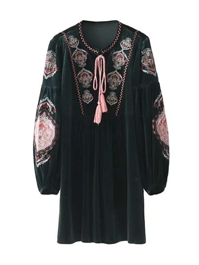 Tassel Tie Lantern Sleeve Embroidered Dress