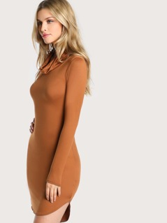 Long Sleeve Turtle Neck Mini Dress BROWN