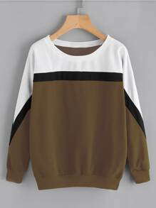 Color Block Cut And Sew Sweatshirt