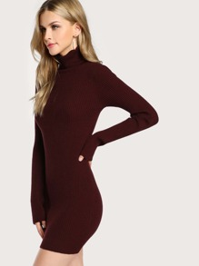 Turtleneck Long Sleeve Ribbed Dress BURGUNDY