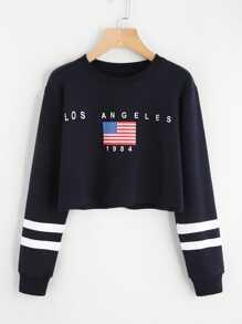 American Flag Print Varsity Striped Crop Sweatshirt