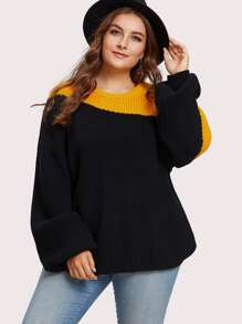 Two Tone Exaggerated Sleeve Sweater