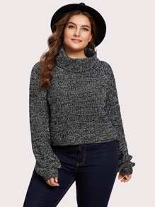 Rolled Neck Marled Knit Sweater
