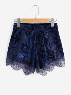 Eyelash Lace Scalloped Trim Velvet Shorts