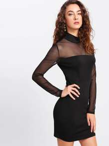 Illusion Neck Fitted Dress