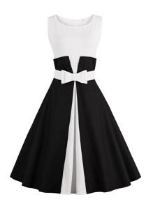 Color Block Flare Dress With Belt