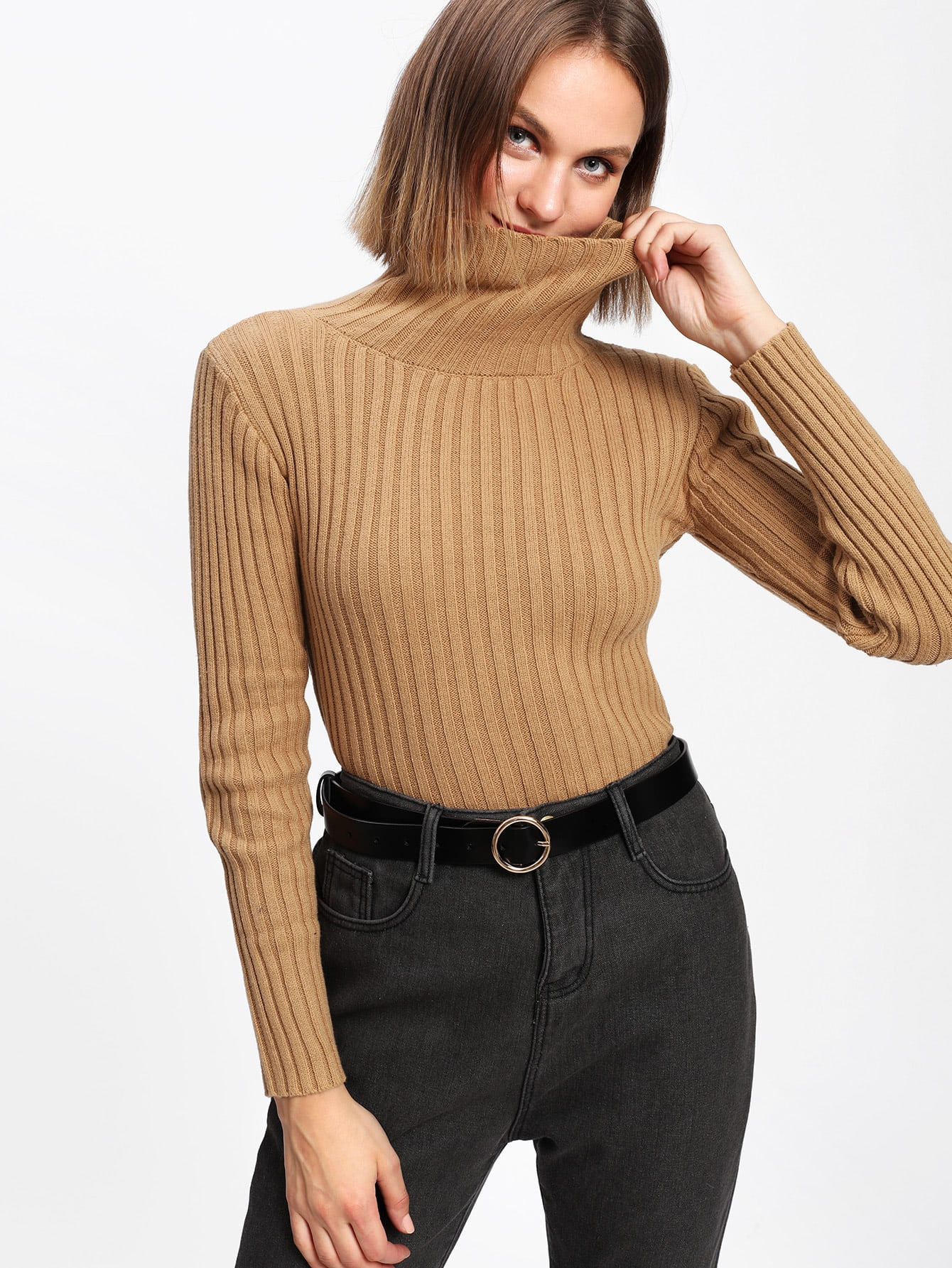 Rib Knit Turtleneck Sweater