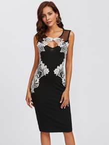 Lace Applique Mesh Panel Fitted Dress