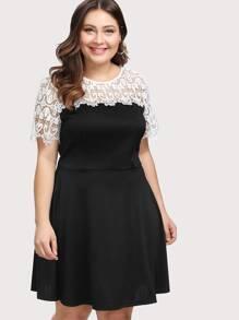 Lace Yoke Fitted & Flared Dress