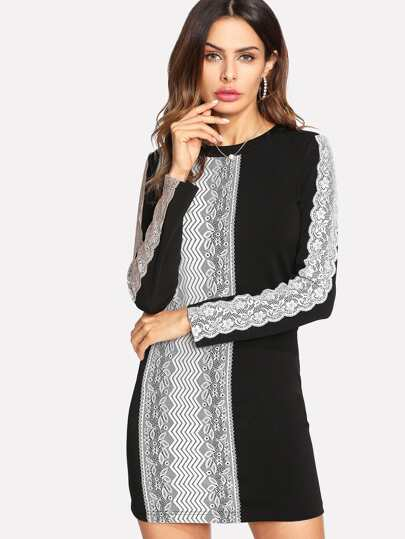 Contrast Lace Applique Fitted Dress