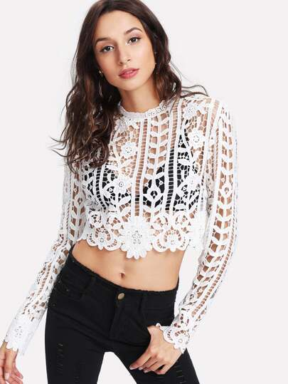Exposed Zipper Back Crop Lace Top