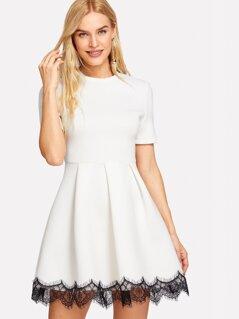 Eyelash Lace Hem Fit & Flare Dress