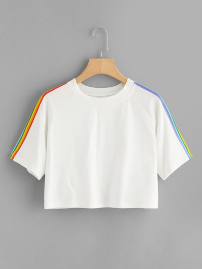 Rainbow Stripe Panel Crop Tshirt