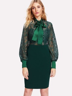 Tie Neck Floral Lace Bodice Fitted Dress