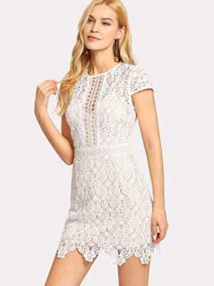 Guipure Lace Form Fitting Dress