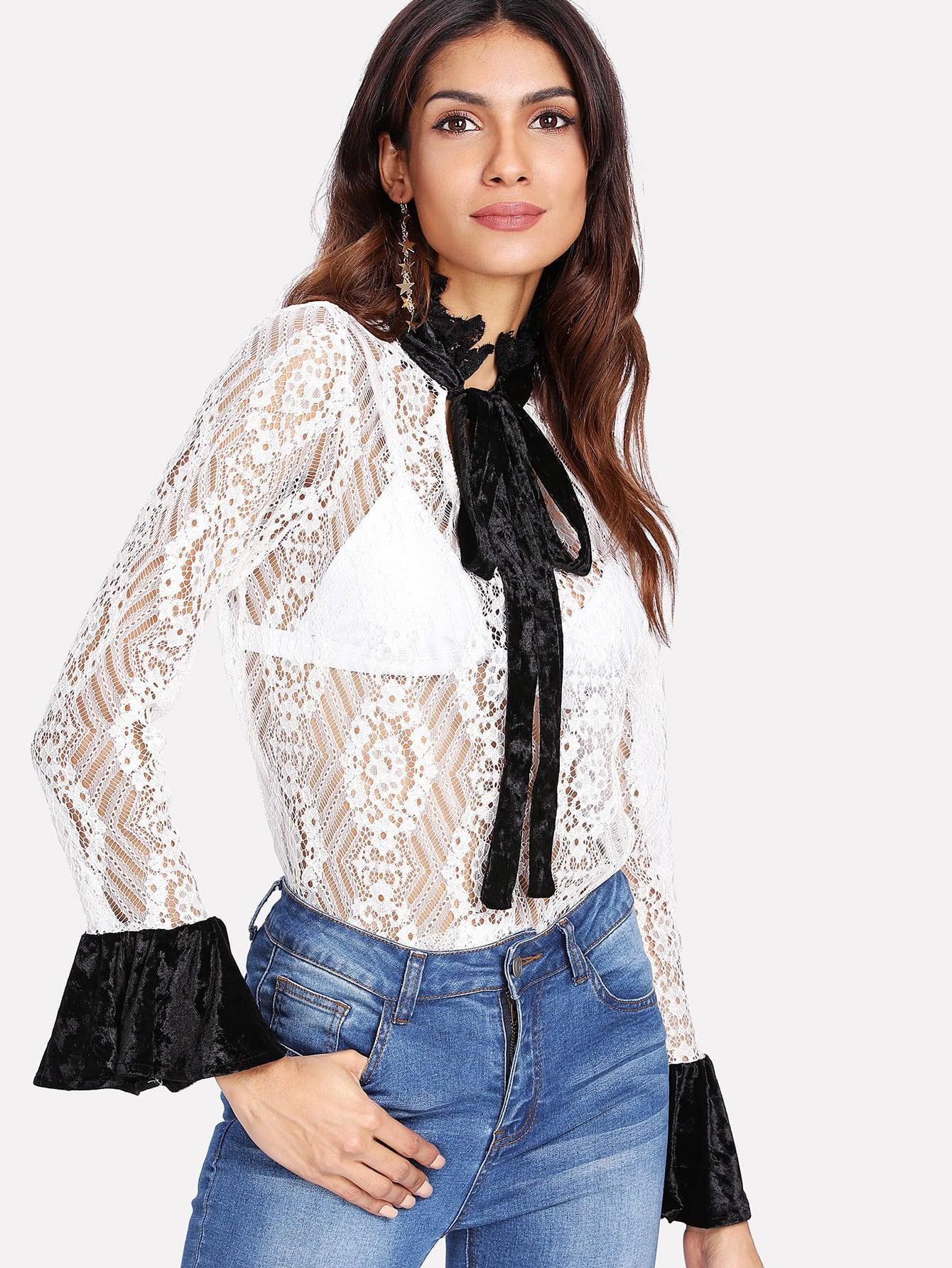 Contrast Velvet Tie Neck Lace Blouse v neck lace trim velvet blouse
