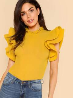 Exaggerate Ruffle Trim Pleated Panel Top