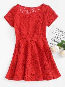 Lace Scoop Neck Dress