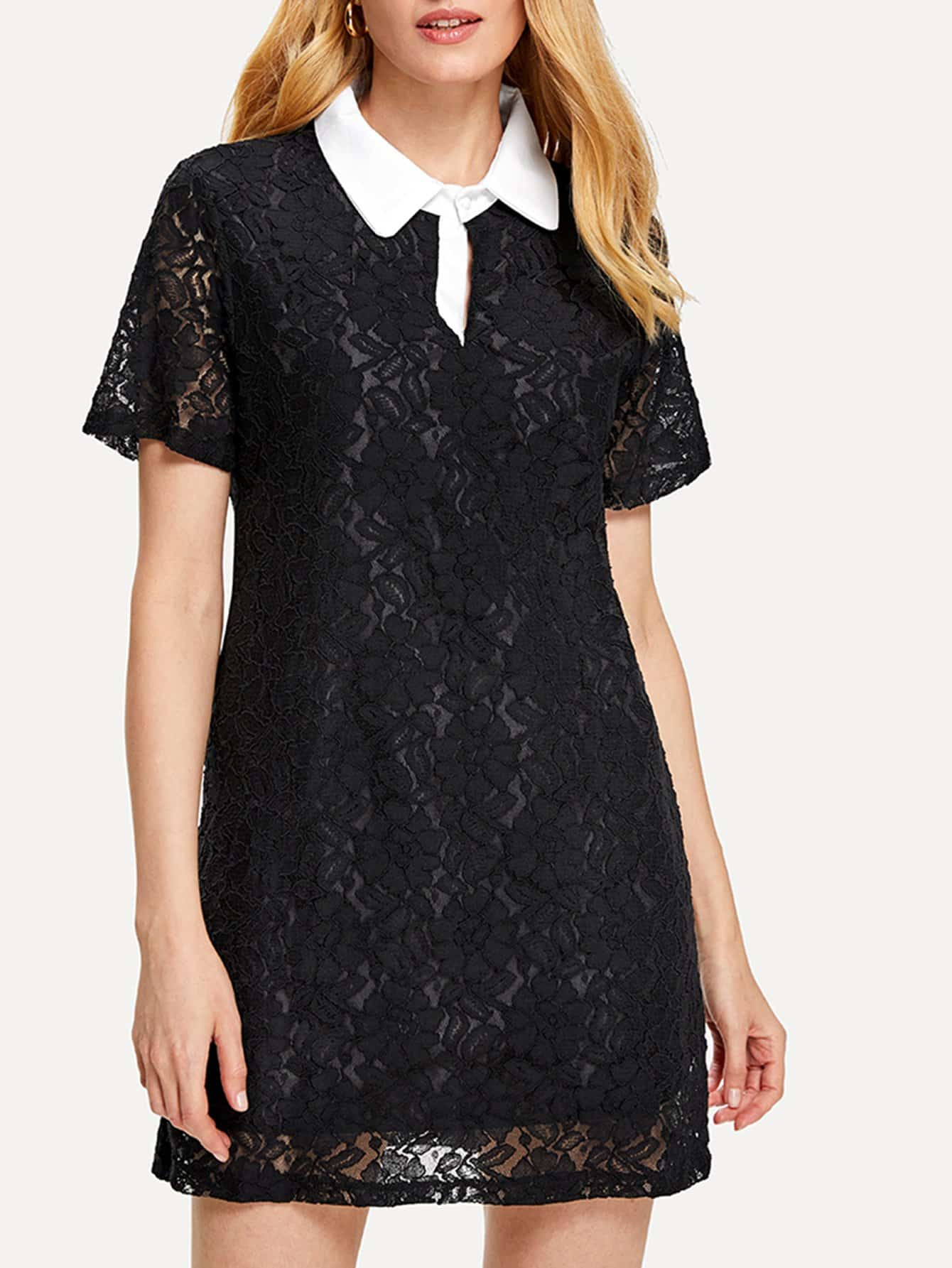 Contrast Collar Lace Dress contrast collar foldover front dress
