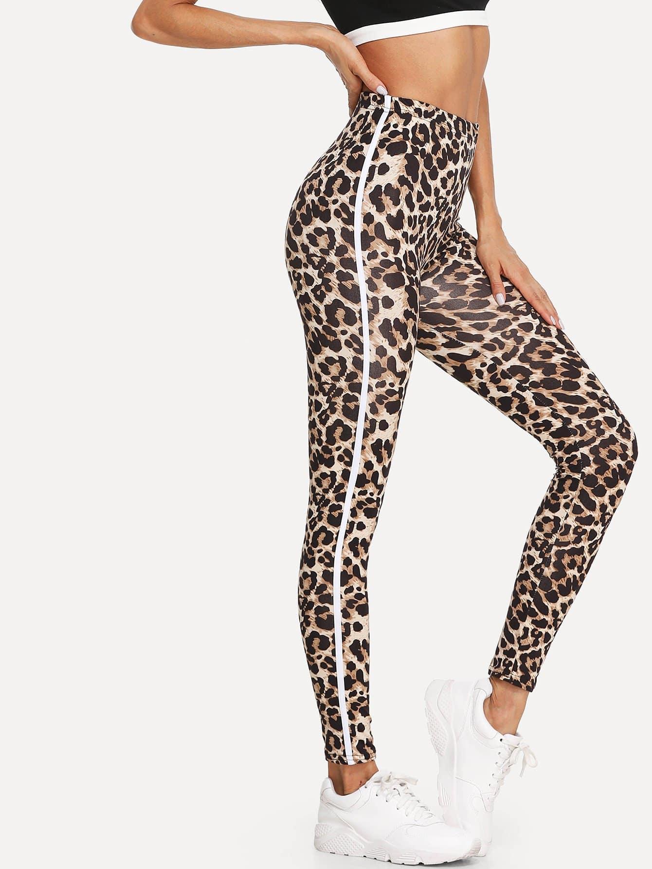 Купить Легинсы с принтом леопард, null, SheIn
