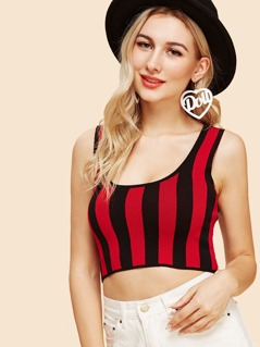 Vertical Striped Crop Shell Top