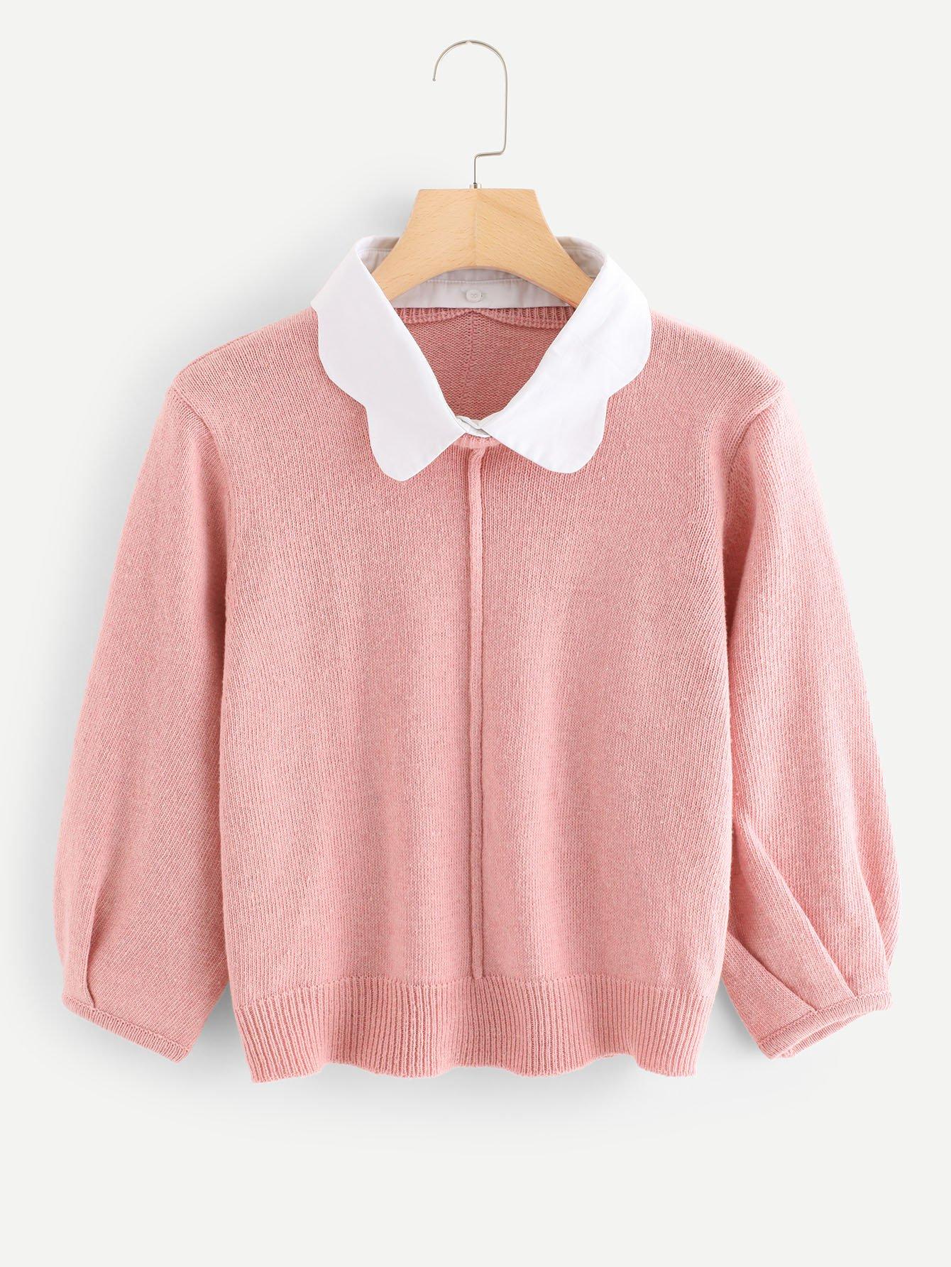 Scallop Contrast Collar Lantern Sleeve Sweater contrast scallop trim balloon sleeve shirt