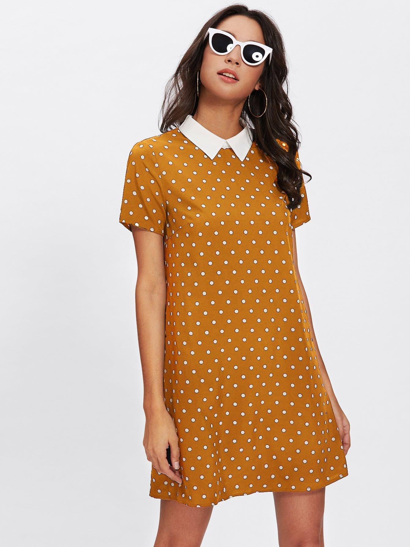 Купить Платье в горошек с контрастным воротником, Gabi B, SheIn