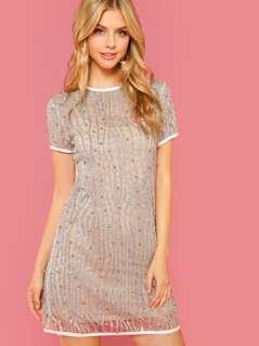 Glitter Embellished Mesh Dress